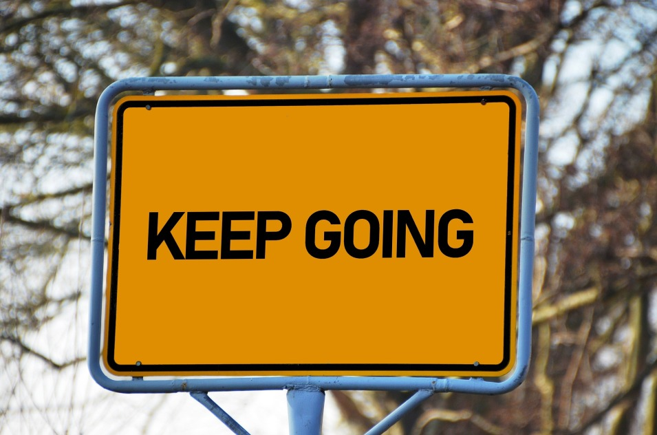Your Grit (perseverance and passion): 4 Levels